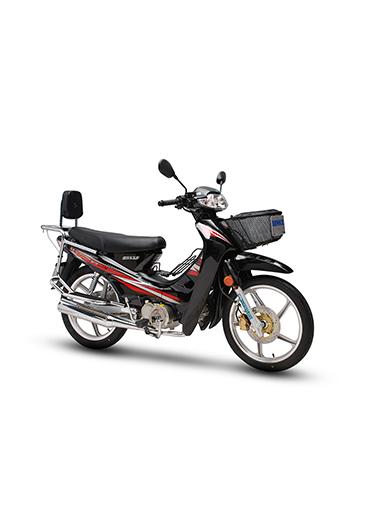 SK110-A